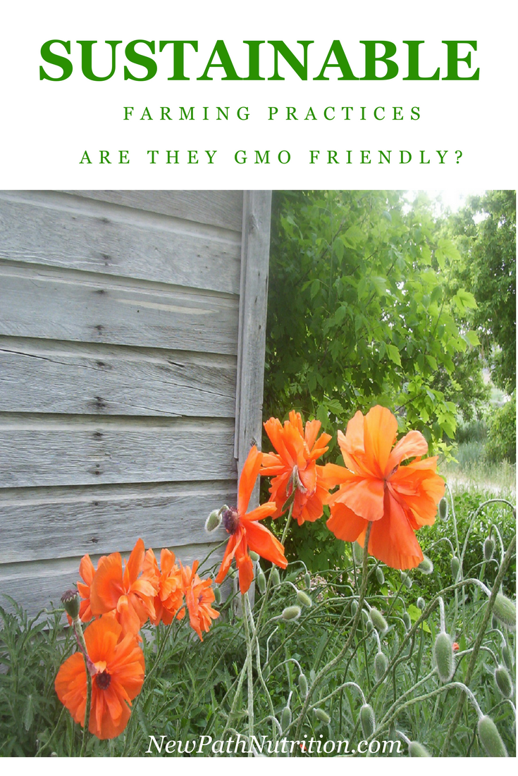 Are sustainable farming practices gmo friendly?